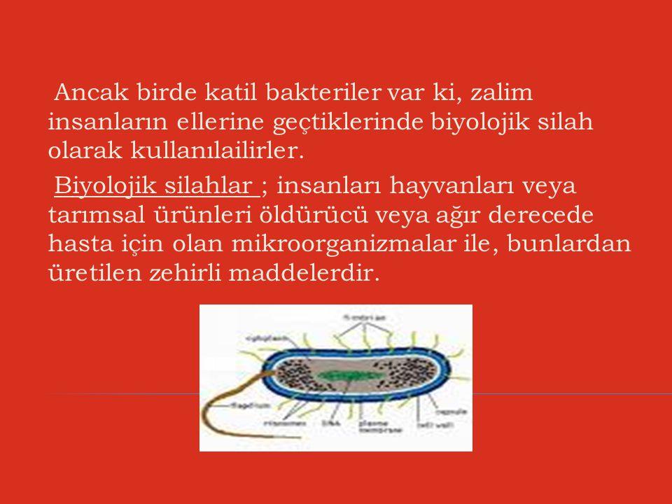 Ancak birde katil bakteriler var ki, zalim insanların ellerine geçtiklerinde biyolojik silah olarak kullanılailirler.