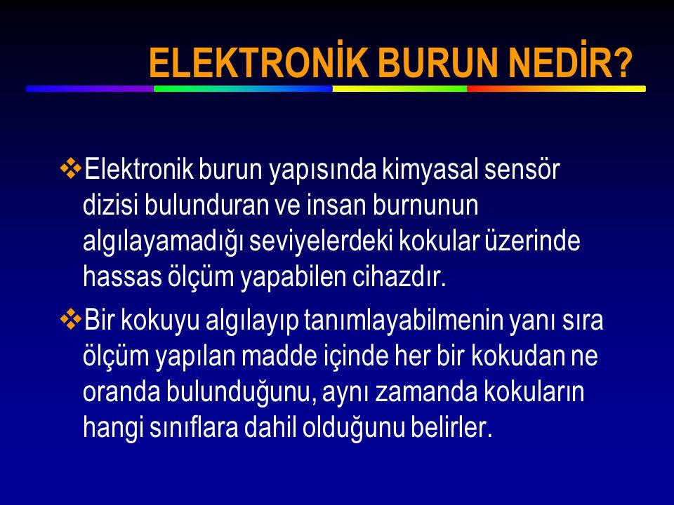 ELEKTRONİK BURUN NEDİR