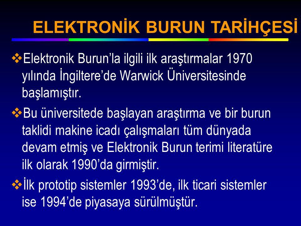 ELEKTRONİK BURUN TARİHÇESİ