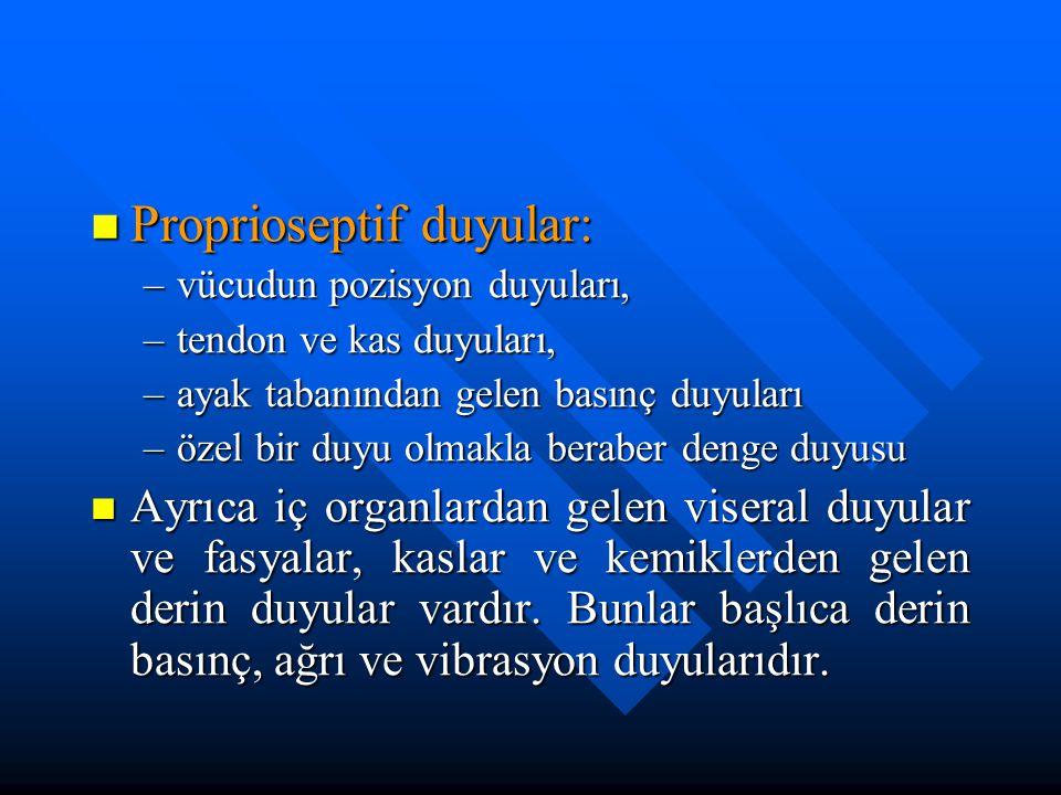 Proprioseptif duyular: