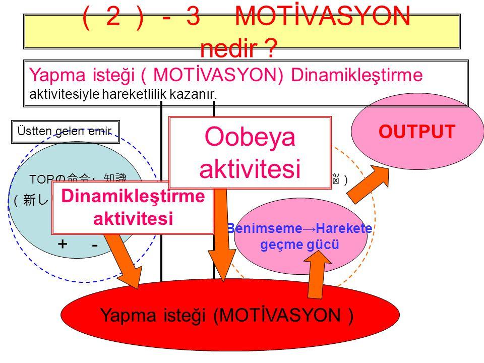 Dinamikleştirme aktivitesi