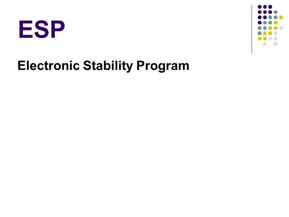 ESP Electronic Stability Program
