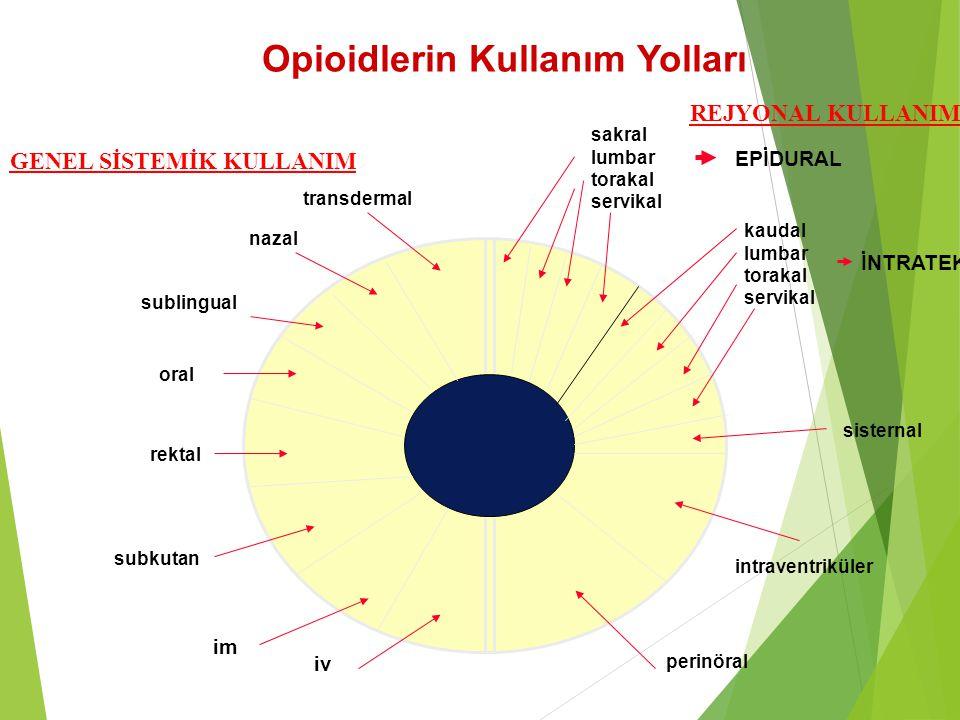 Opioidlerin Kullanım Yolları