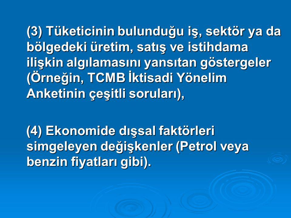 (3) Tüketicinin bulunduğu iş, sektör ya da bölgedeki üretim, satış ve istihdama ilişkin algılamasını yansıtan göstergeler (Örneğin, TCMB İktisadi Yönelim Anketinin çeşitli soruları),