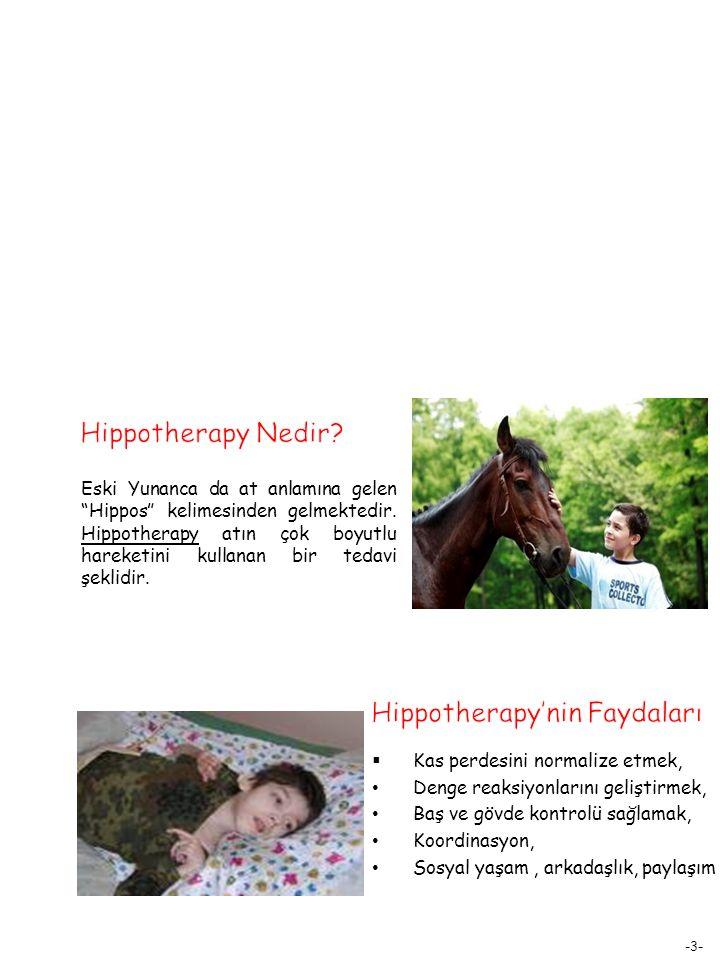 Hippotherapy'nin Faydaları