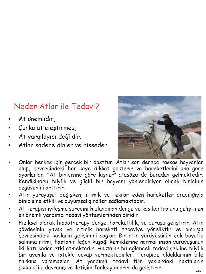 Neden Atlar ile Tedavi At önemlidir, Çünkü at eleştirmez,