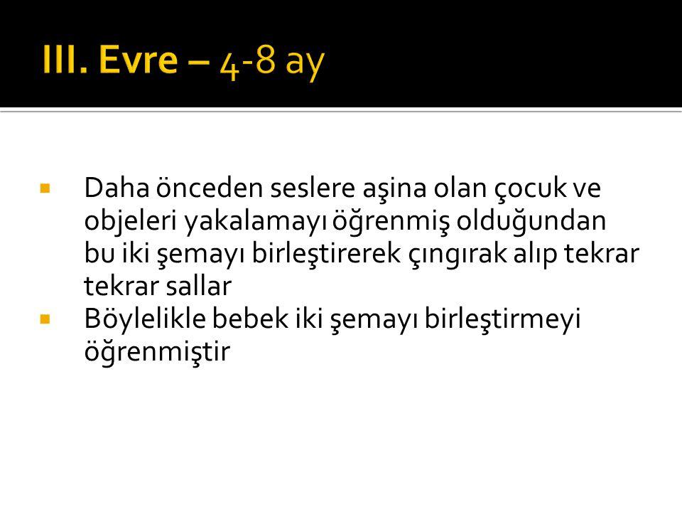 III. Evre – 4-8 ay