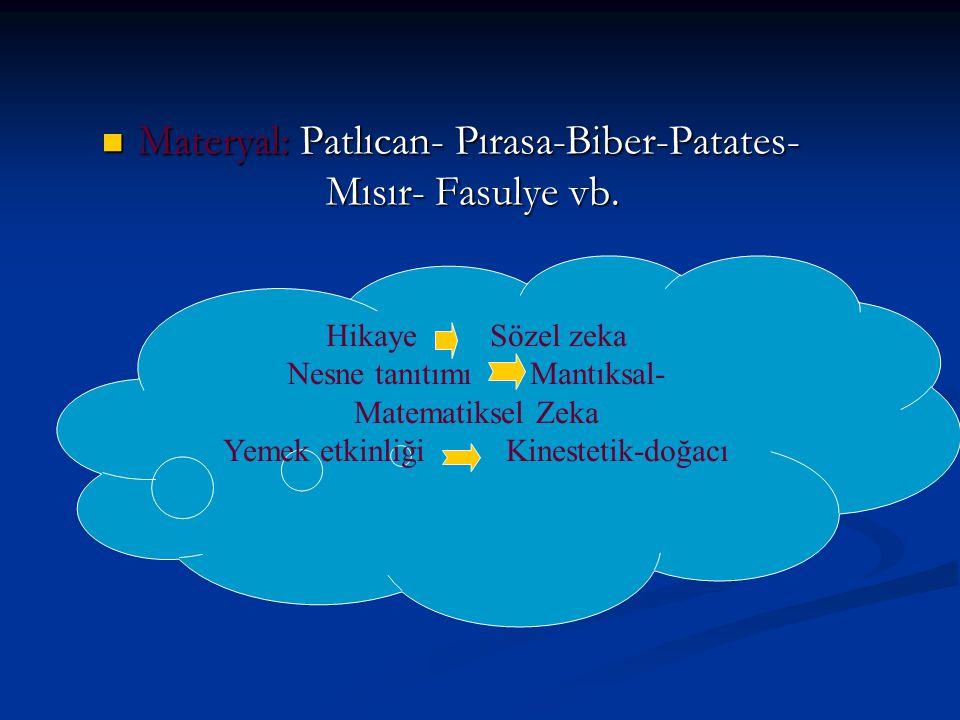 Materyal: Patlıcan- Pırasa-Biber-Patates- Mısır- Fasulye vb.