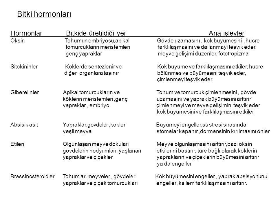 Bitki hormonları Hormonlar Bitkide üretildiği yer Ana işlevler