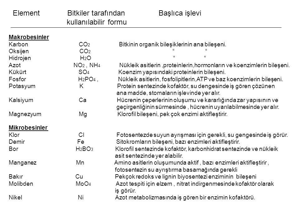Element Bitkiler tarafından Başlıca işlevi kullanılabilir formu