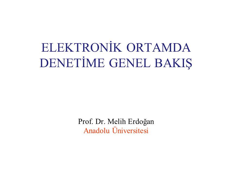 ELEKTRONİK ORTAMDA DENETİME GENEL BAKIŞ Prof. Dr