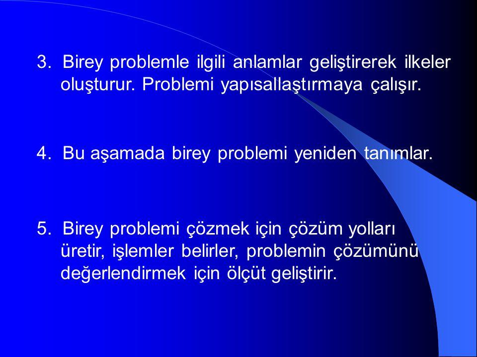3. Birey problemle ilgili anlamlar geliştirerek ilkeler oluşturur