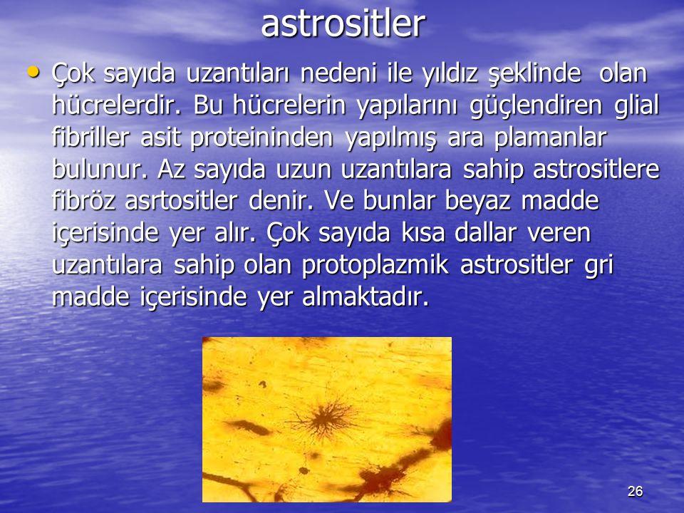 astrositler