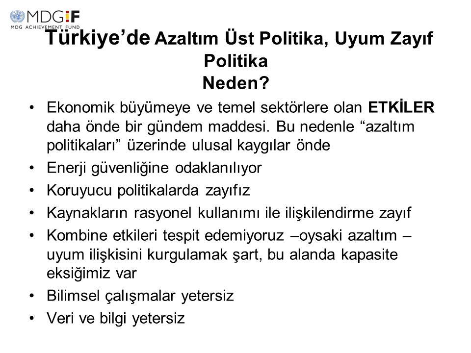 Türkiye'de Azaltım Üst Politika, Uyum Zayıf Politika Neden