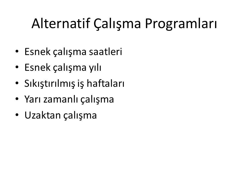 Alternatif Çalışma Programları