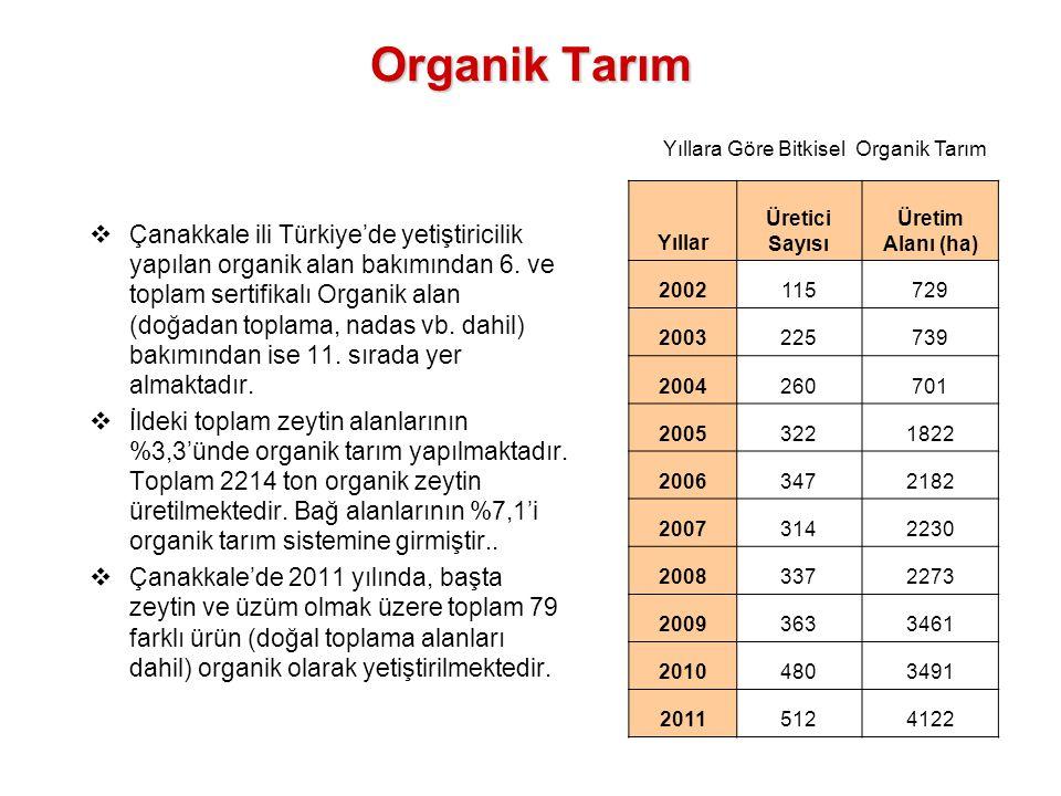 Yıllara Göre Bitkisel Organik Tarım