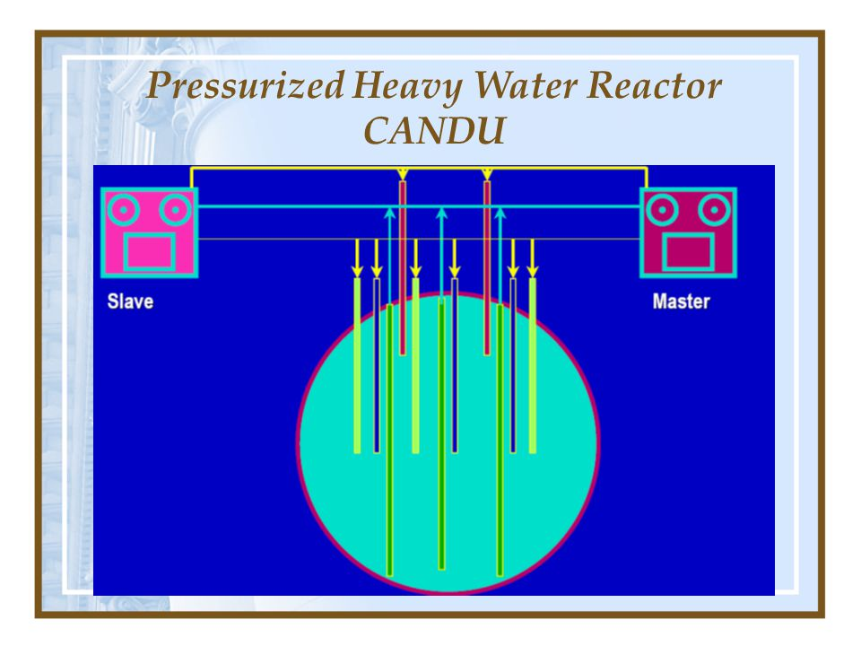 Pressurized Heavy Water Reactor CANDU