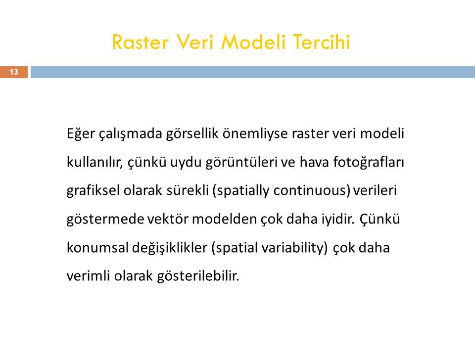Raster Veri Modeli Tercihi