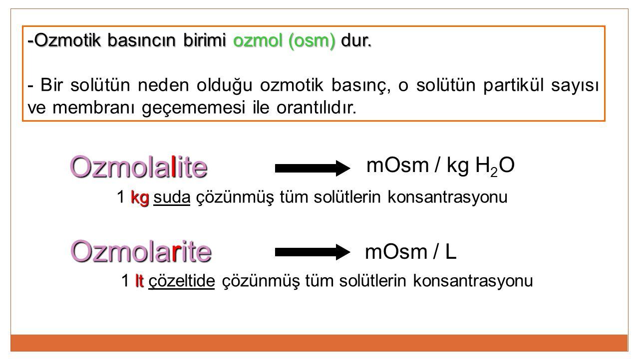 Ozmolalite Ozmolarite mOsm / kg H2O mOsm / L