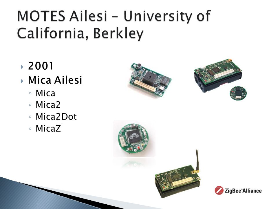 MOTES Ailesi – University of California, Berkley
