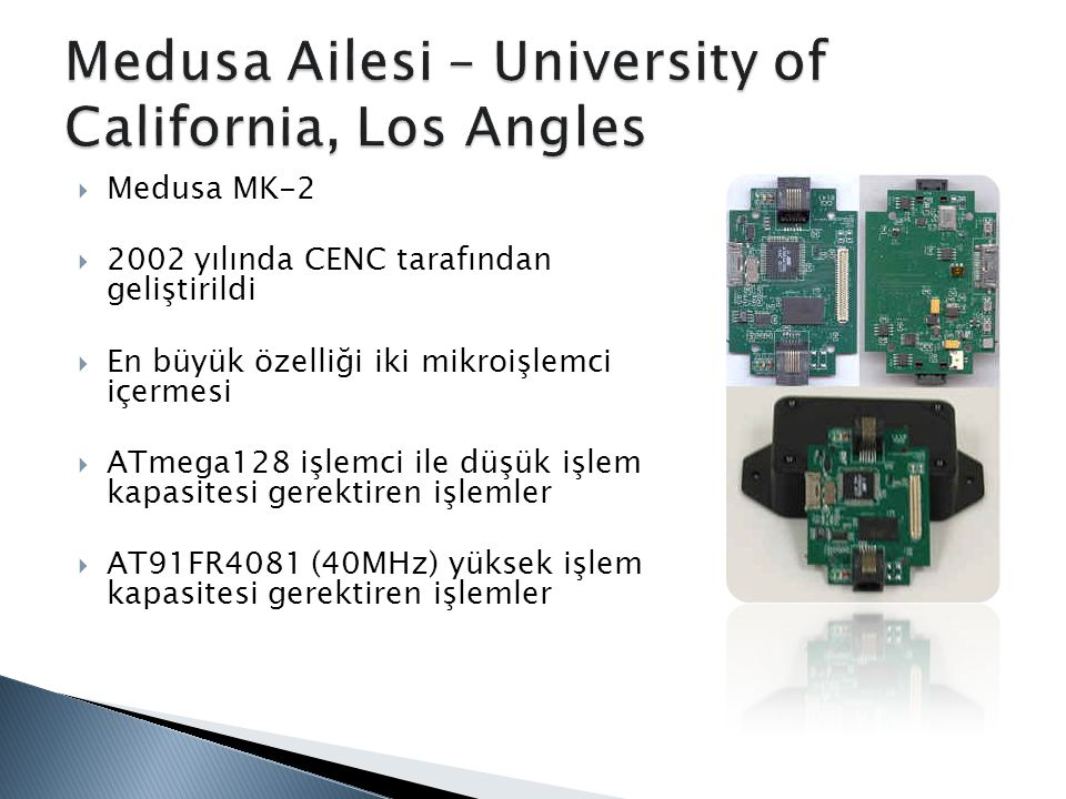 Medusa Ailesi – University of California, Los Angles