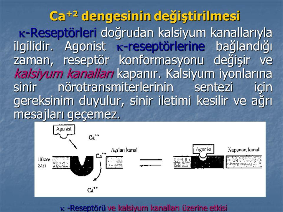 Ca+2 dengesinin değiştirilmesi