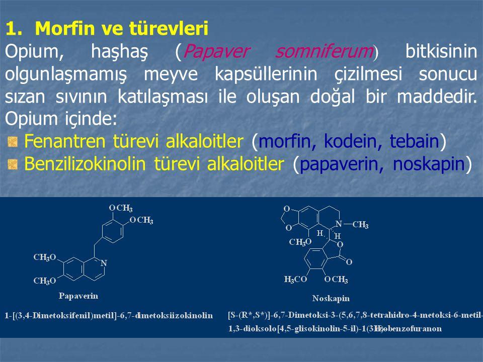 1. Morfin ve türevleri