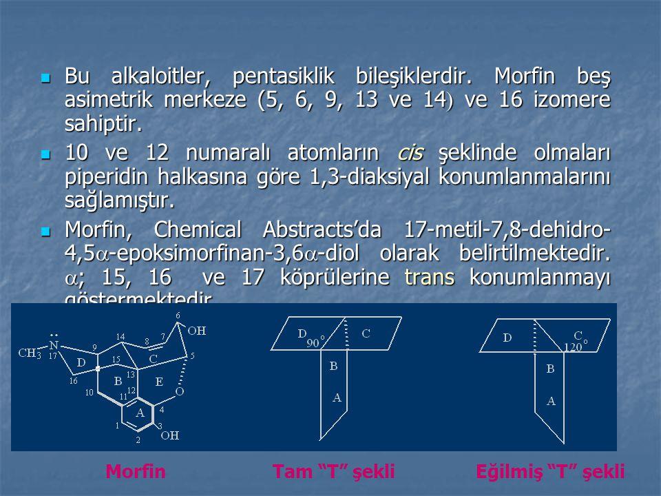 Bu alkaloitler, pentasiklik bileşiklerdir