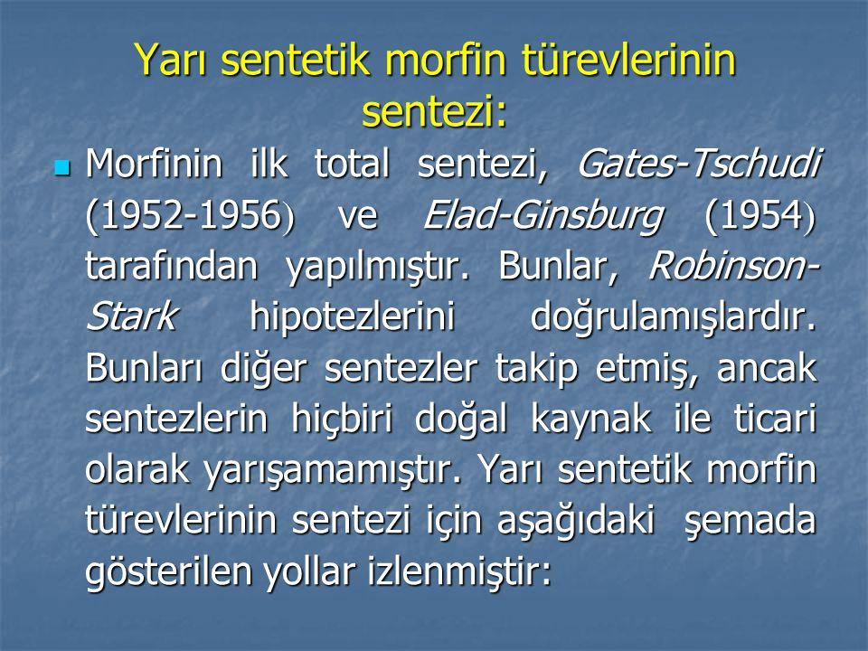Yarı sentetik morfin türevlerinin sentezi: