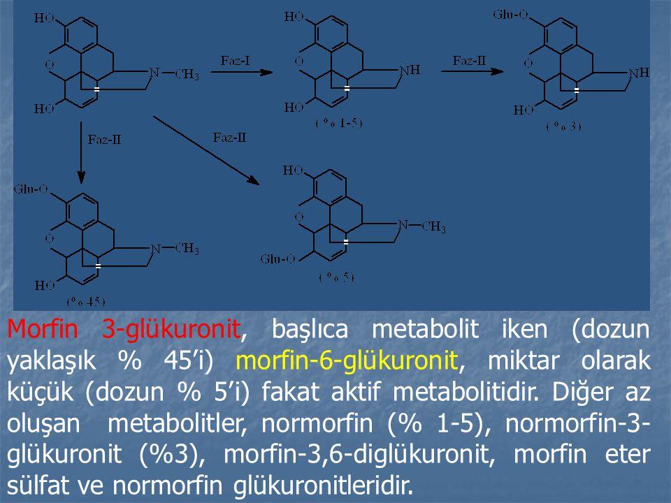 Morfin 3-glükuronit, başlıca metabolit iken (dozun yaklaşık % 45'i) morfin-6-glükuronit, miktar olarak küçük (dozun % 5'i) fakat aktif metabolitidir.