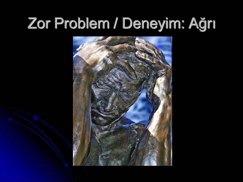 Zor Problem / Deneyim: Ağrı