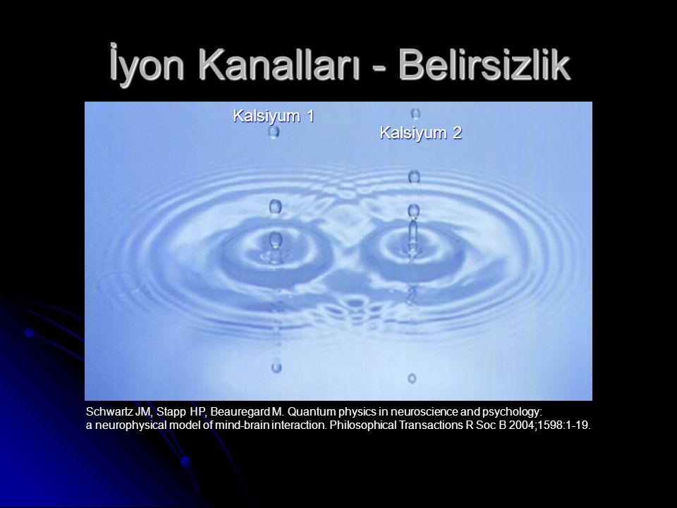 İyon Kanalları - Belirsizlik