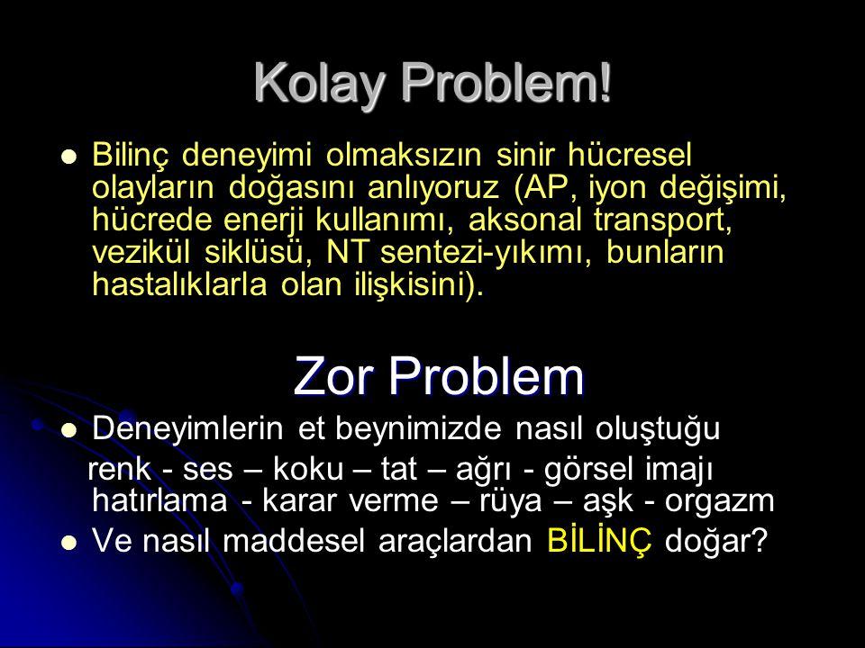 Kolay Problem! Zor Problem