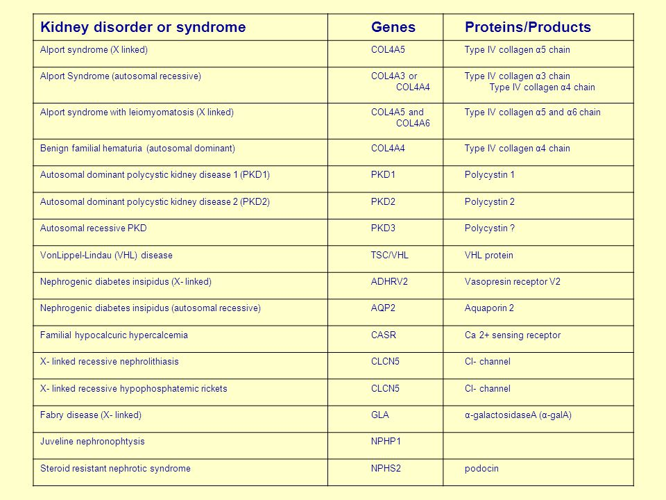 Kidney disorder or syndrome Genes Proteins/Products