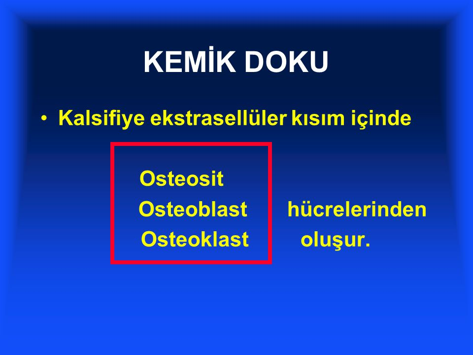 KEMİK DOKU Kalsifiye ekstrasellüler kısım içinde Osteosit