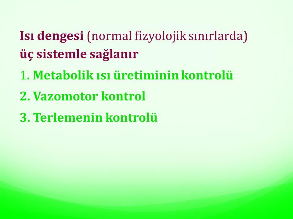 Isı dengesi (normal fizyolojik sınırlarda)