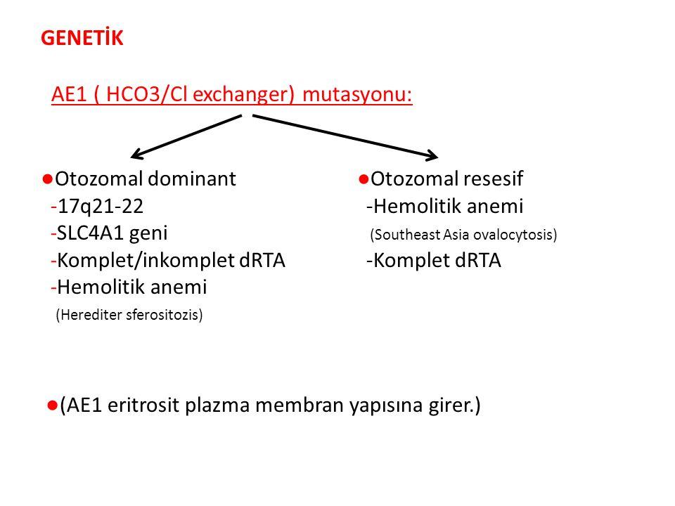 AE1 ( HCO3/Cl exchanger) mutasyonu: