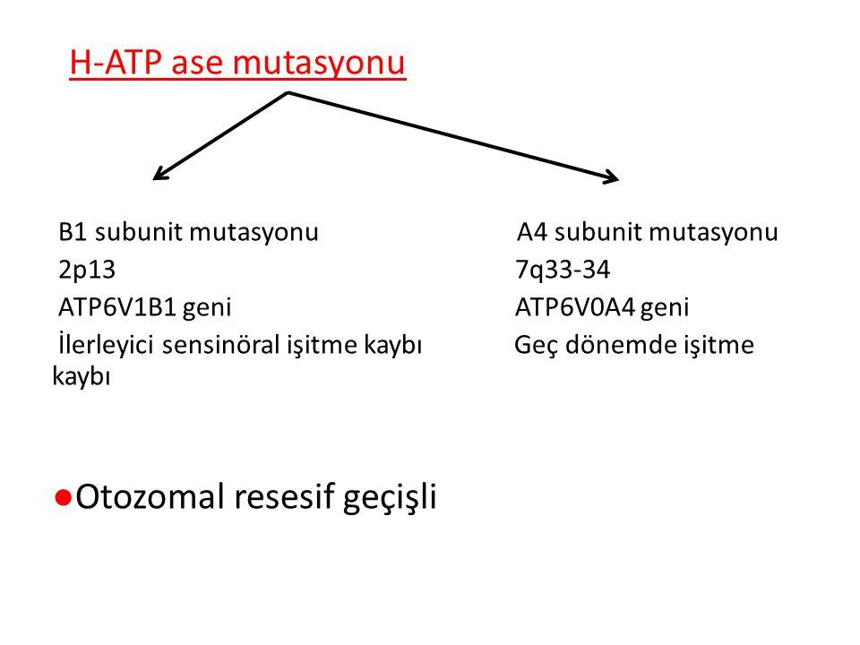 ●Otozomal resesif geçişli