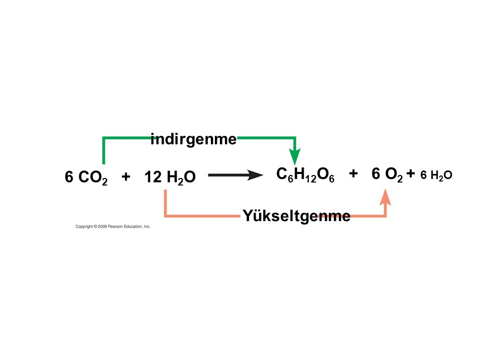 indirgenme C6H12O6 + 6 O2 + 6 H2O 6 CO2 + 12 H2O Yükseltgenme