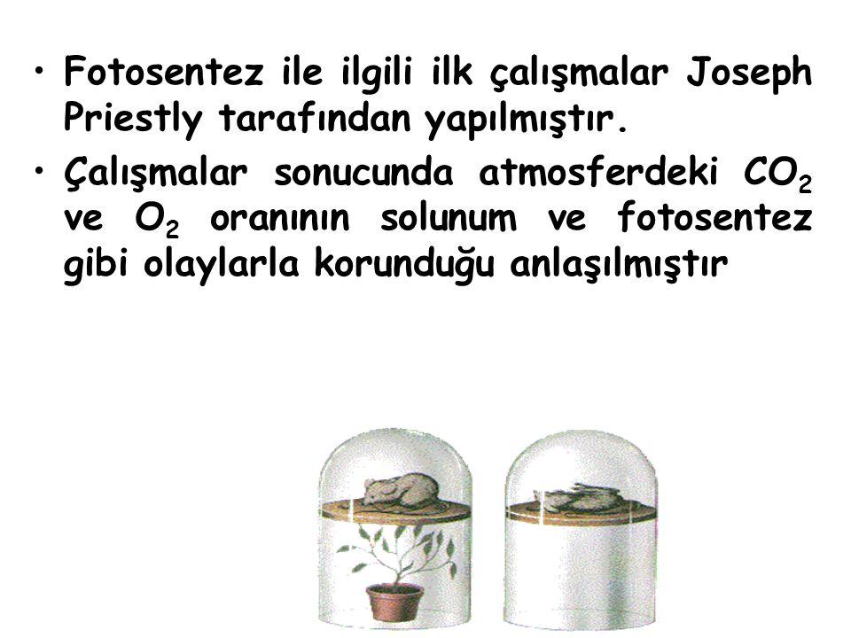 Fotosentez ile ilgili ilk çalışmalar Joseph Priestly tarafından yapılmıştır.
