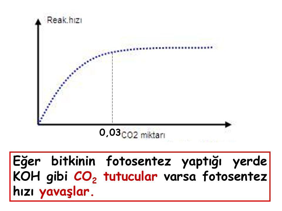0,03 Eğer bitkinin fotosentez yaptığı yerde KOH gibi CO2 tutucular varsa fotosentez hızı yavaşlar.