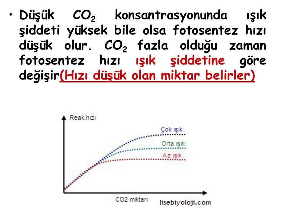 Düşük CO2 konsantrasyonunda ışık şiddeti yüksek bile olsa fotosentez hızı düşük olur.