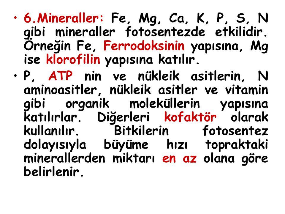 6.Mineraller: Fe, Mg, Ca, K, P, S, N gibi mineraller fotosentezde etkilidir. Örneğin Fe, Ferrodoksinin yapısına, Mg ise klorofilin yapısına katılır.
