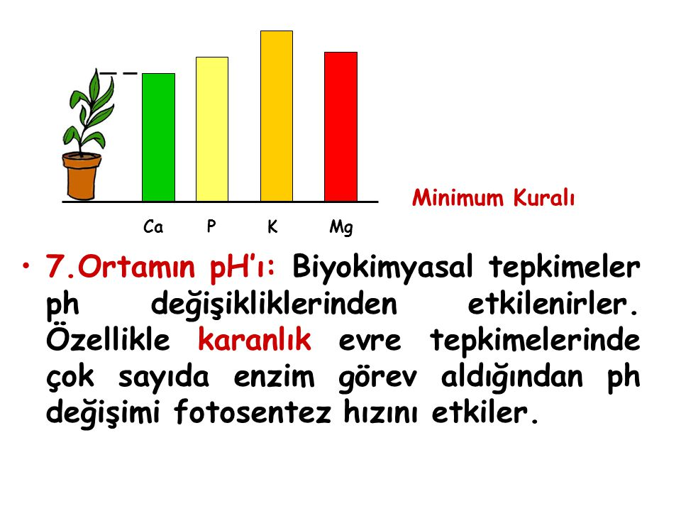 Minimum Kuralı Ca P K Mg.
