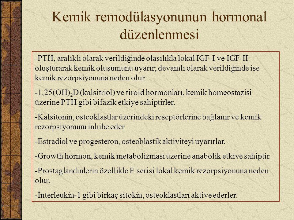 Kemik remodülasyonunun hormonal düzenlenmesi