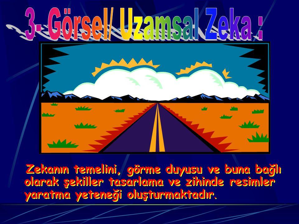 3- Görsel/ Uzamsal Zeka :