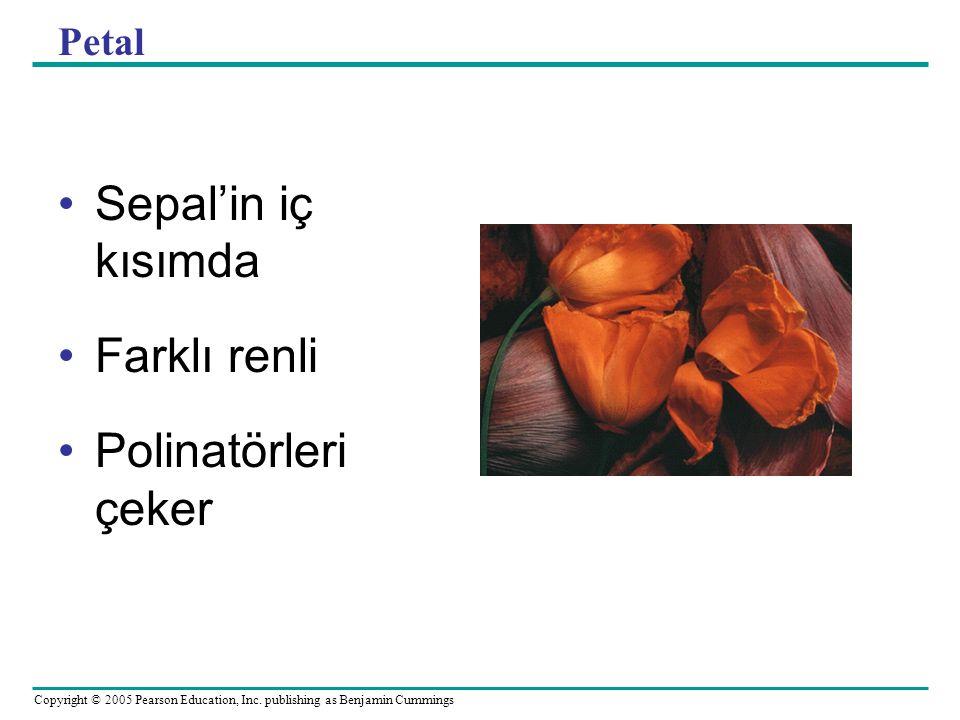 Petal Sepal'in iç kısımda Farklı renli Polinatörleri çeker