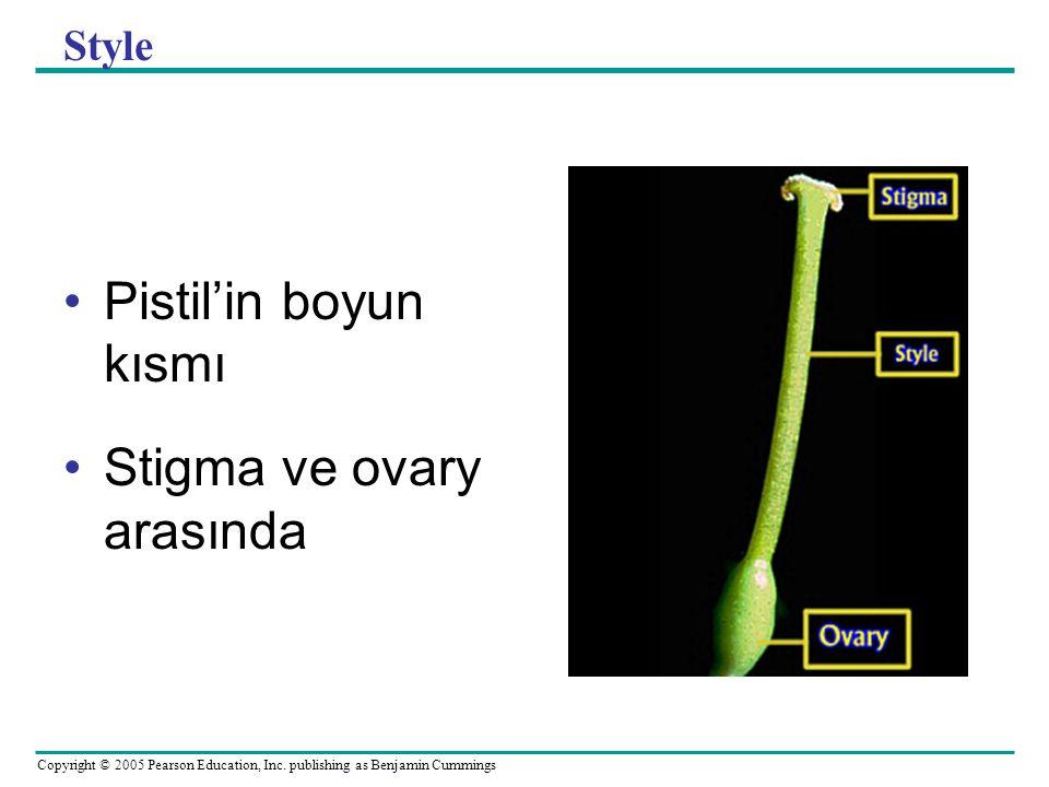 Stigma ve ovary arasında