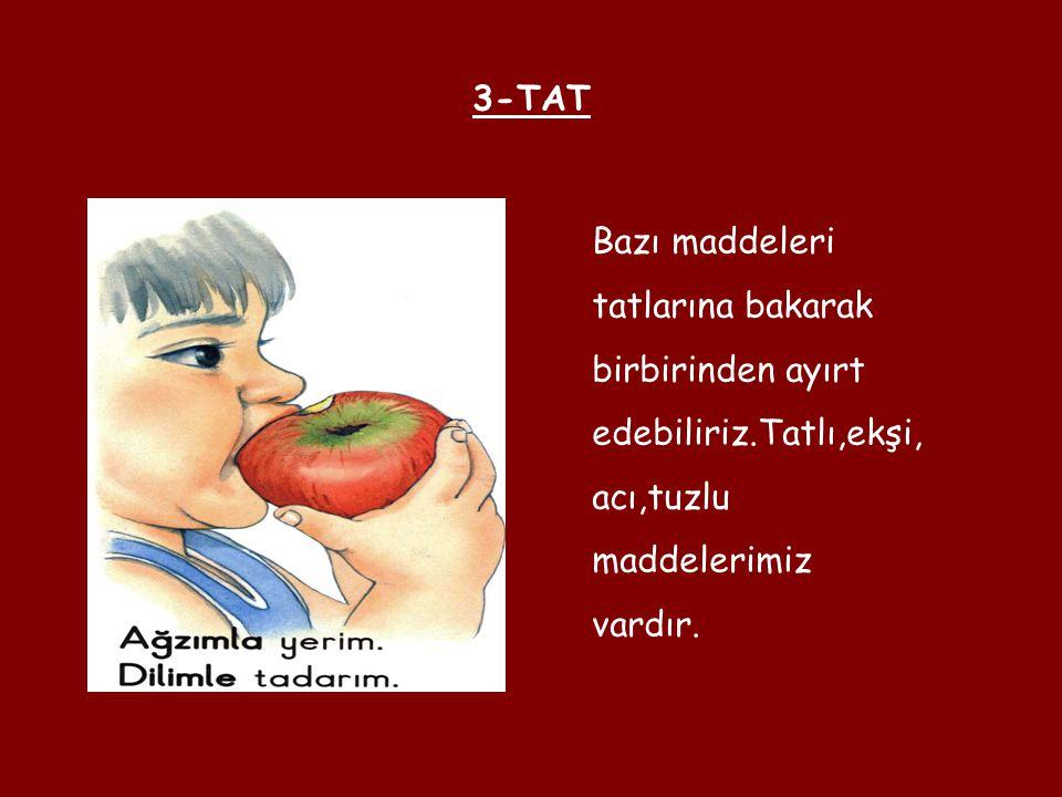 3-TAT Bazı maddeleri. tatlarına bakarak. birbirinden ayırt. edebiliriz.Tatlı,ekşi, acı,tuzlu. maddelerimiz.