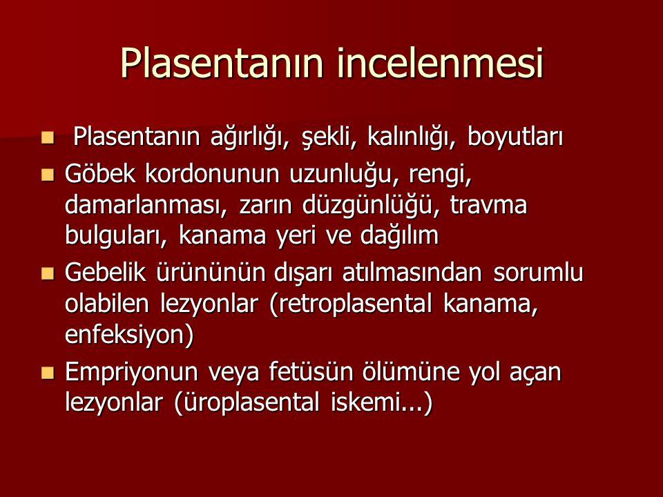 Plasentanın incelenmesi